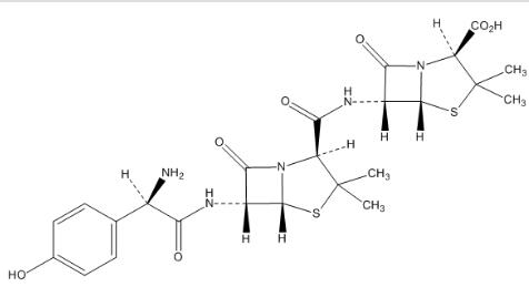 Amoxicillin Related Compound L